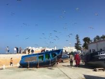 Port de Pêche à Essaouira